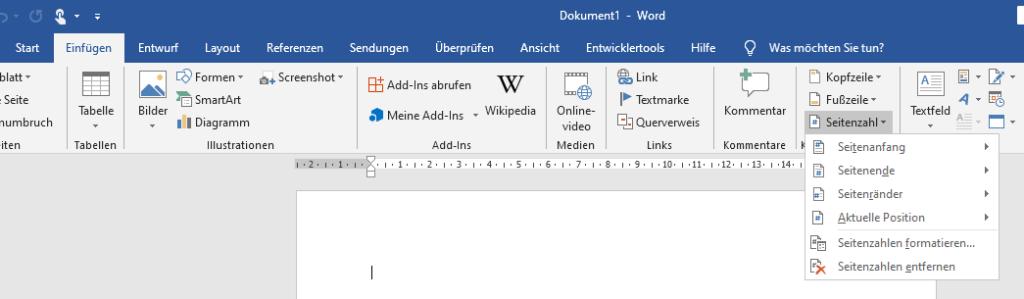 Word Seitenzahlen Formatieren