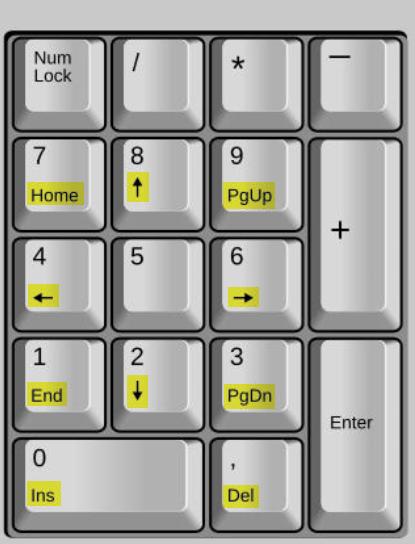 Shift-Taste auf dem Ziffernblock bzw. der Zifferntastatur oder Nummerntastatur
